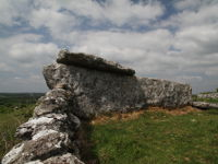Ballyganner South Wedge Tomb