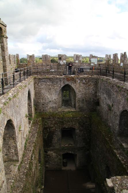 Blarney castle entrance fee